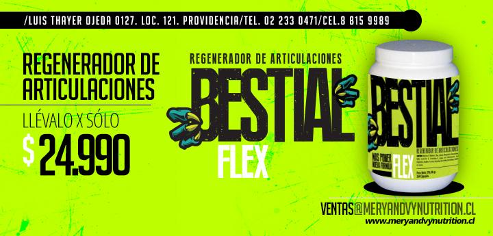 Flyer FLEX 01